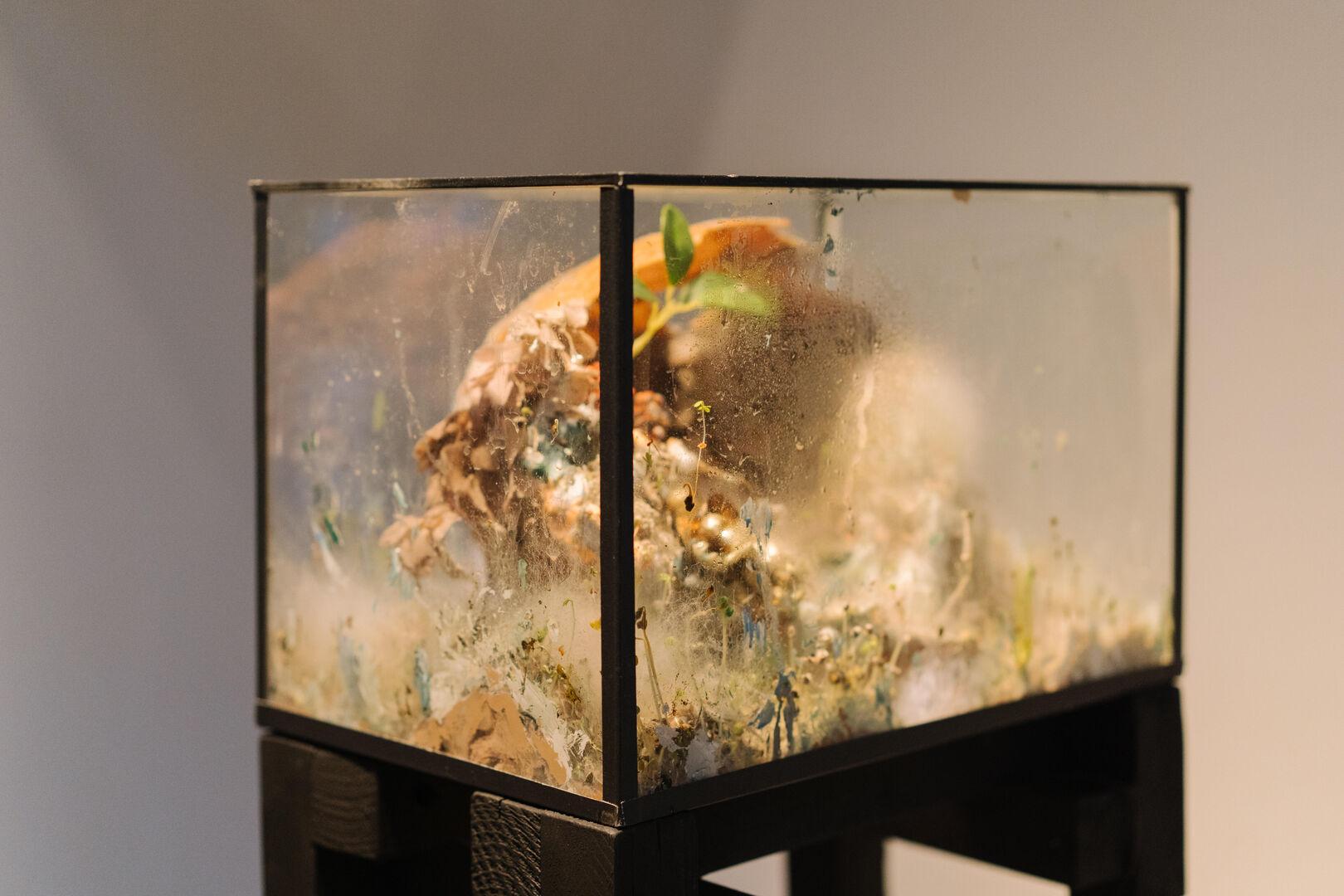 Museum Jan Cunen_opening_3oktober2020_Fotograaf_Almicheal_Fraay-53