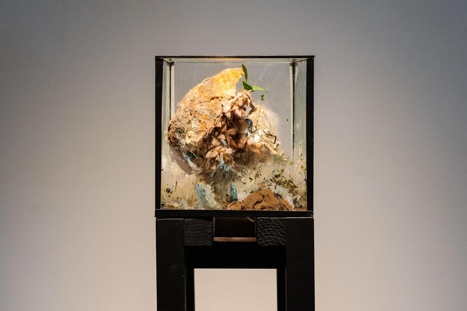 Museum Jan Cunen_opening_3oktober2020_Fotograaf_Almicheal_Fraay-54